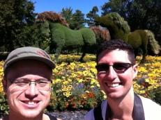 More topiary horses.