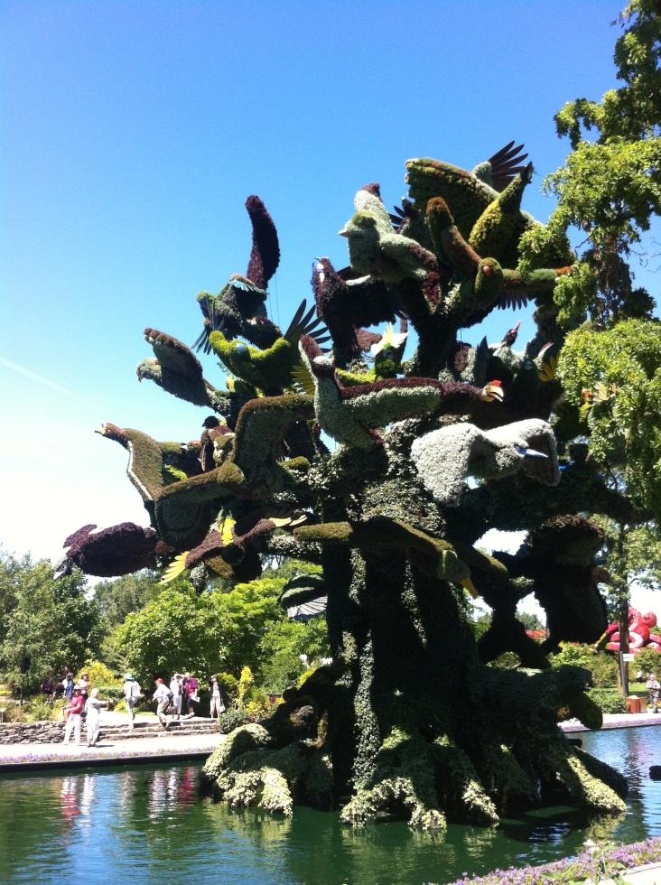 A bird tree!