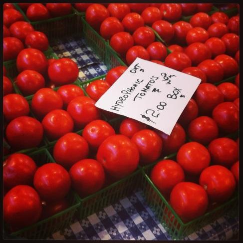 HydroPhonic Tomato's [sic]
