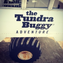Tundra Buggy Adventure Churchill, Manitoba.