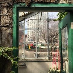 Allen Gardens Conservatory, Toronto.