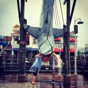 Jaws @ Universal