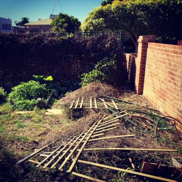 Our lattice was destroyed in the fence repairs.