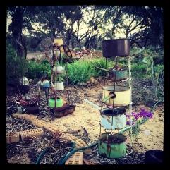 Aunty Terina's garden.