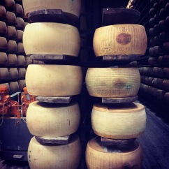 Three standards of cheese: first and second class, and table cheese. Parmigiano-Reggiano D.O.P. factory, Modena, Italia.