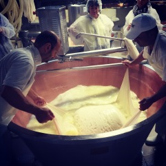 Removing the curd block. Parmigiano-Reggiano D.O.P. factory, Modena, Italia.