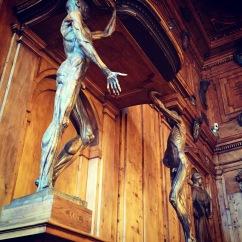 Statues without skin! Il teatro anatomico - Biblioteca comunale dell'Archiginnasio