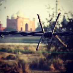 View from across the river. Taj Mahal, Agra, India.